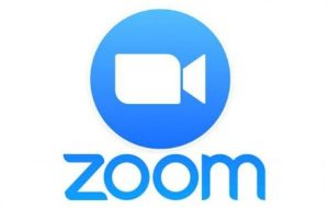 Zoom with Margaret Lin